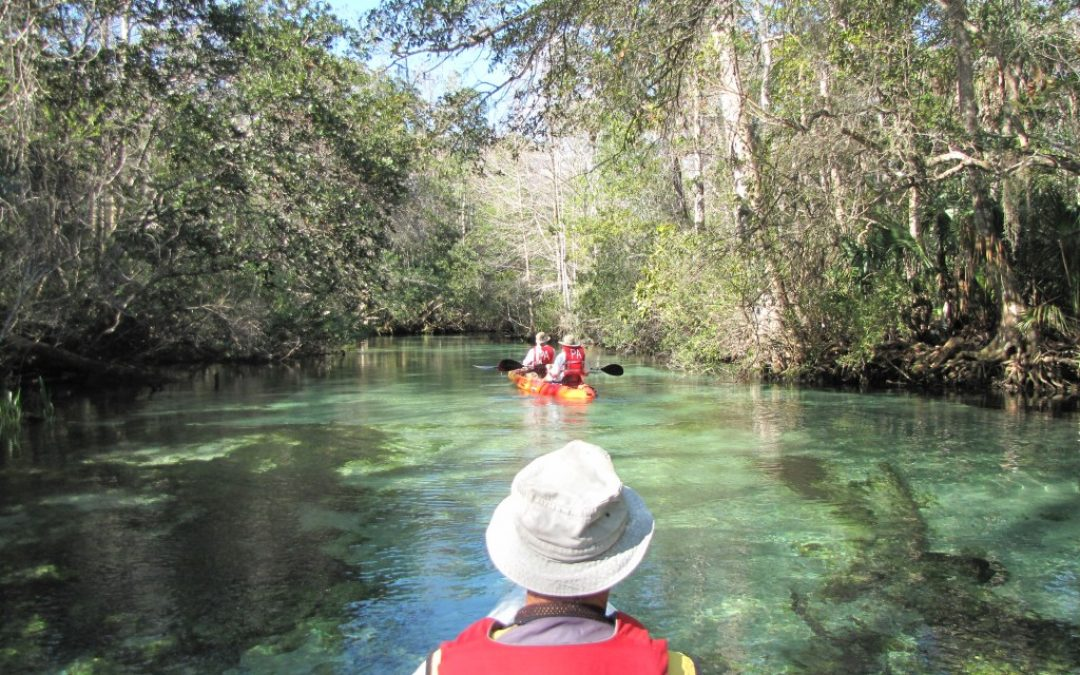 Planning Your River Paddling Adventures